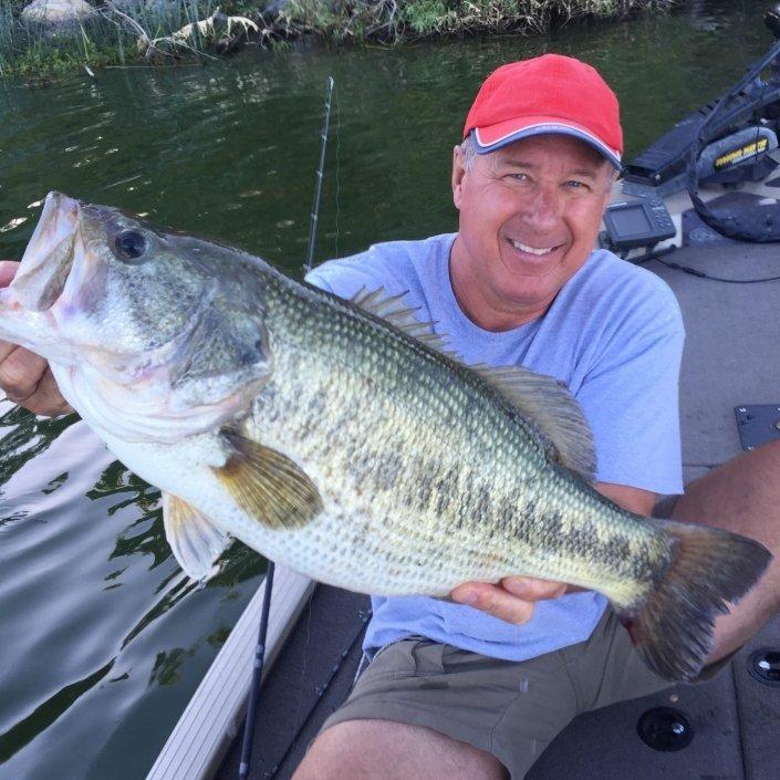 Sieg Taylor 11.5 lb Bass